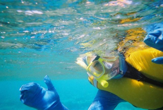 A Snorkelers Dream