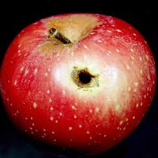 Do your Apples look like this?
