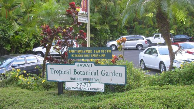The Tropical Botanical Garden North of Hilo is Rich in Diversity!