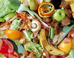 Food Waste can be Recycled!