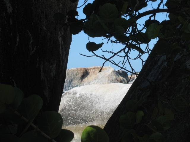 Virgin Islands 143