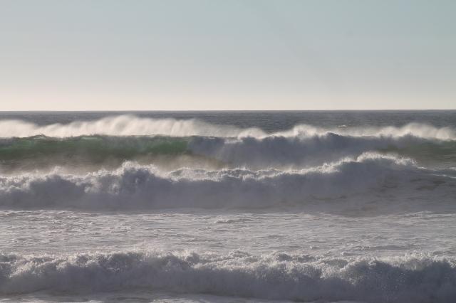 Monterey 035