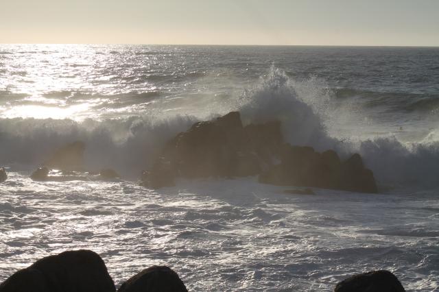 Monterey 046